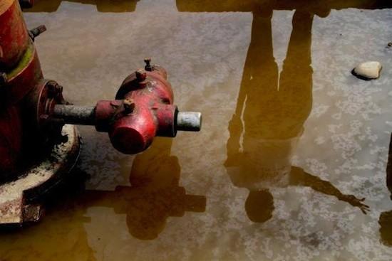 Crímenes medioambientales y económicos serán juzgados en la CPI