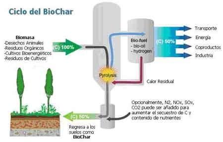 Ciclo-BioChar