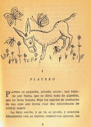 Platero I Feliz cumpleaños Platero!