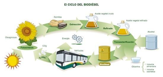 España e Italia solas en la defensa del biodiesel