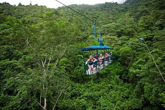 Los bosques cubren más de 52 % del territorio de Costa Rica, país pionero en el mundo en ponerse como meta alcanzar el carbono neutralidad en 2021