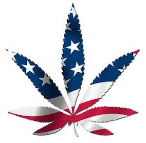 usa eeuu marihuana El New York Times pide la legalización de la marihuana