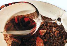 El vino y el terruño. gastronomiadealicante