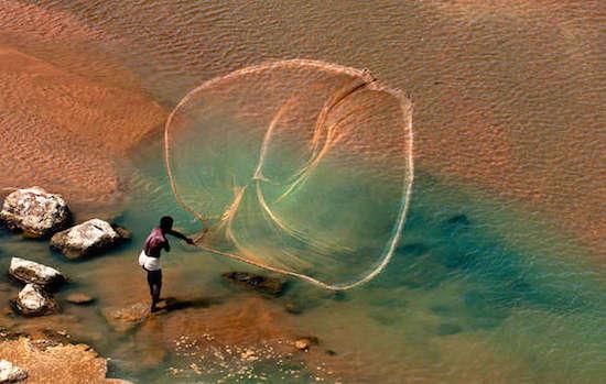 Pescador santhal desplegando su red en Bengala Occidental, India. © Partha Pratim / Survival International