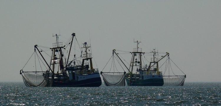 Sáhara Occidental: acuerdo de pesca legalmente dudoso con Marruecos | Periodistas en Español