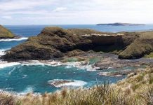 Wikipedia: Cabo Grim, mirando hacia el norte. Los Doughboys a la izquierda, Trefoil Island a media distancia, Hunter Island y Three Hummock Island más allá de la derecha.