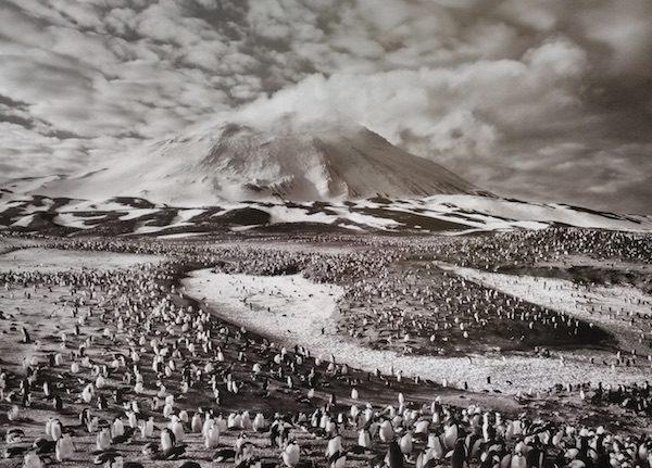 Salgado Salamanca volcan