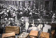 Fotografía de la exposición sobre el campo de exterminio Auschwitz