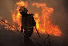 Incendio en Galicia Foto cedida: EFE/Eliseo Trigo