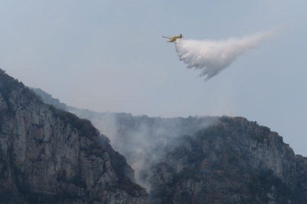 Incendios forestales: Llutsent-Gandía ©Greenpeace / Pedro ARMESTRE