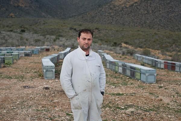 02/02/2017. Sierra de las Moreras, Mazarrón, Región de Murcia, España. Miles de abejas aparecen muertas delante de las colmenas. © Greenpeace/ Pablo Blázquez