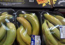 plasticos supermercados platanos