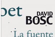 Portada de Coubert, la fuente clara, de David Bosch, publicada por Demipage