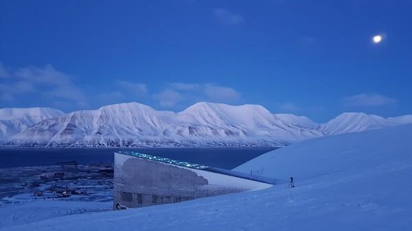 semillas Svalbard